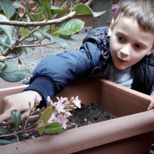Primavera: tempo di giochi nel giardino della scuola dell'Infanzia